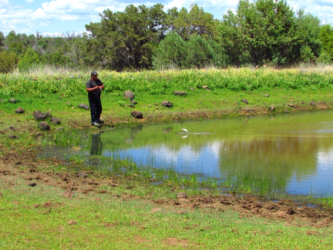 Where to fish san carlos apache tribe for Local fishing ponds